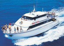 Dive Trip Adventures with Pro Dive Cairns